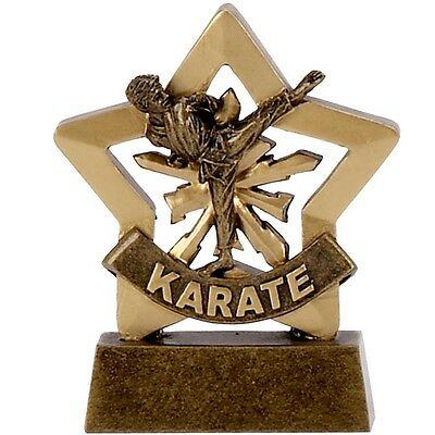 Karate Mini Stars Prize Award Trophy FREE ENGRAVING