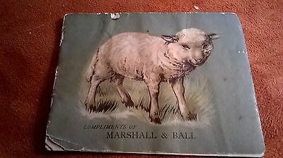 Marshall & Ball Clothing House Patterson, Nj Advertising 3 Little Lambs Book Adv