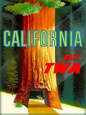 California TWA Redwoods Vintage Airline U.S. Travel Advertisement Poster Print
