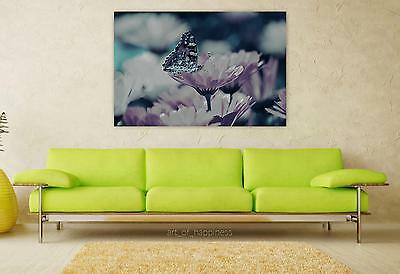 Stunning Poster Wall Art Decor Flowers Butterfly Background 36x24 Inches