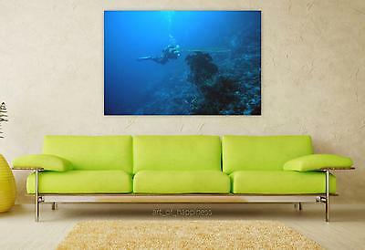 Stunning Poster Wall Art Decor Diving Underwater Water 36x24 Inches
