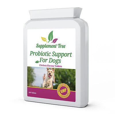 Probiotics for Dogs 120 Tablets; Multi Strain for Pets with Digestive Enzymes