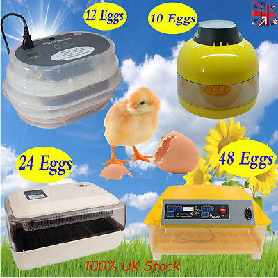 10 12 24 Egg Incubator Fully Automatic Digital LED Turner Poultry Chicken Duck