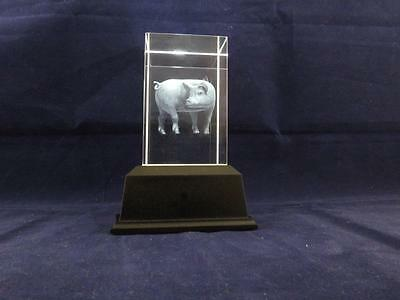 Solid Glass Crystal Laser Block and White Light Box - Pig.