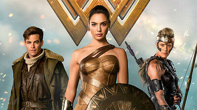 Wonder woman Gal Gadot movie Silk Poster Print, 24x13 inch