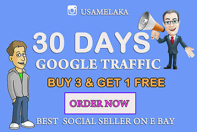ONE Month Traffic/visitors instantly via Google - SEO service Real GoogleTraffic