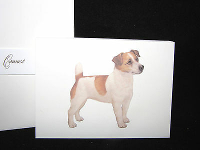 Crane's 100% Cotton JACK RUSSELL TERRIER Dog Boxed NOTE CARDS Set of 10
