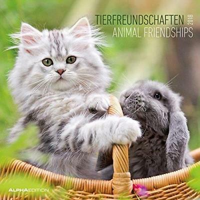 Animal friendships. Calendario da muro 2018