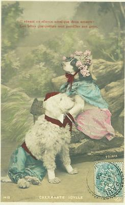 Old Postcard PC Poodle & Jack Russell Terrier Dogs Charming Idyll France 1906