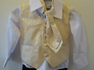 RICARDO - Boys 4 Piece GOLD Formal WEDDING PAGE BOY Suit 1 Year 12 Months NEW
