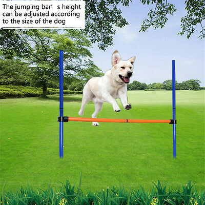Training Equipment Games Agility Jump High Outdoor Exercise Sports Pet Dogs Toys