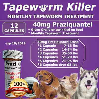 "Tapeworm Killer for Dogs""12"" Capsules of Generic Droncit 40mg"