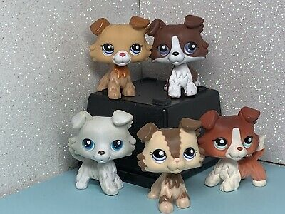 5 X Littlest Pet Shop LPS Collie Dog Collection 1542 2210 2452 363 Choc White
