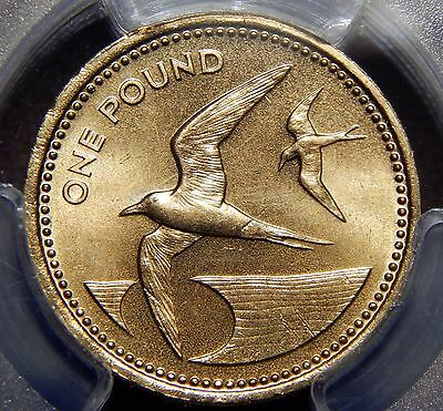 St. Helena & Ascension 1984 1£ Pound PCGS MS 66 The Queen & Terns Nice Coin Rare