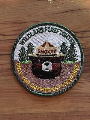 2004 Smokey the Bear Hot Shot Firefighter Forest Patch WILDLAND Wildfire Badge