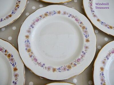 7 VINTAGE DUCHESS 'MEADOWSWEET' BONE CHINA TEA PLATES 16.5cm - FAB CONDITION