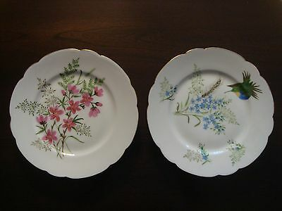 """HAVILAND & Co.  -  LIMOGES  -  Set of 2  -  8-1/2"""" Hand Painted PLATES  -  Exc++"""