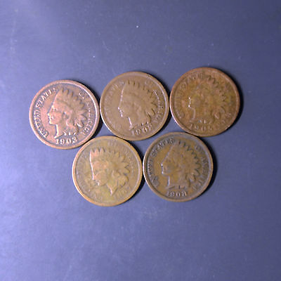 Five Different Date Indian Head Pennies!