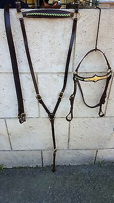 campdraft stockhorse bridle & breastplate set leather green gold RI15 Barcoo