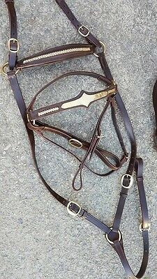 Ri4 Bridle breastplate cob full stock horse barcoo rodeo camp drafting cob full