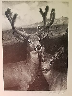 George ford Morris lithograph