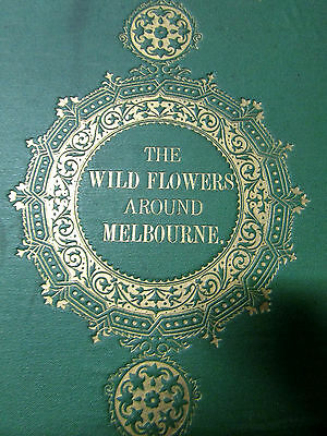 Rare Antique Book -The Wild Flowers Around Melbourne - Fanny Anne Charsley 1867