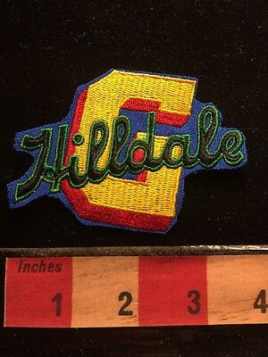 Hilldale Negro League Baseball PA Patch-ish Embroidered Cut-out Of Dress 68E1