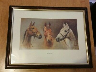 Signed Red Rum Framed Picture
