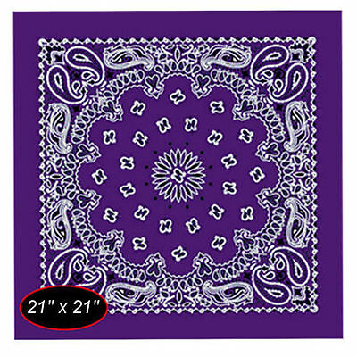 Ladies Biker Bandana, Scarf, Wrap  ~ Purple Paisley ~