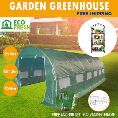 3 4.5 6M Walk In Greenhouse Tunnel Plant Green House Garden Storage Grow Sheds