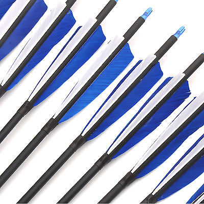 A Dozen Mixed Carbon Shooting Archery Arrows Diameter 7.8mm 30 Inches Spine 600