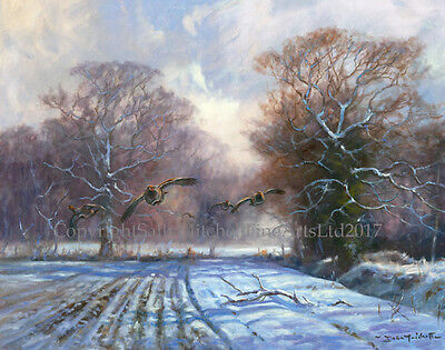 Partridges in the Snow Christmas Cards pack of 10 by John Trickett. C505X