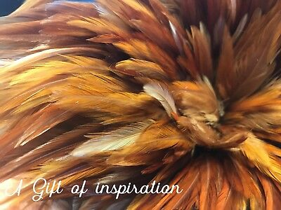 20 Brown Tan Rooster Feathers 10-15cm DIY Millinery Craft Decoration Fly tying