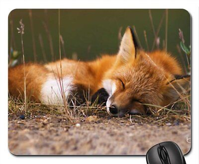Fox Mouse Pad, Mousepad