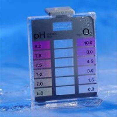 Minitester Chlorine 0-3mg/l / pH Low Range
