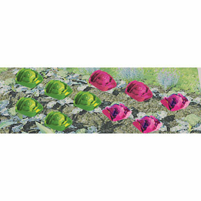 """JTT Scenery Products-HO Cabbage & Lettuce, .25"""" wide (20)"""