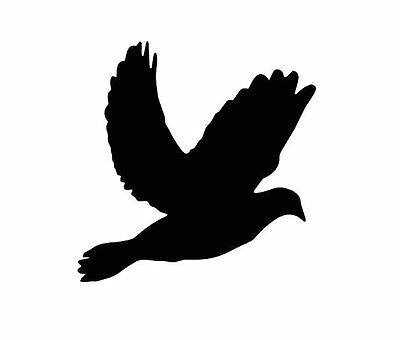Doves Vinyl Wall Art (1 inch to 6 inch) (25 mm to 152 mm)