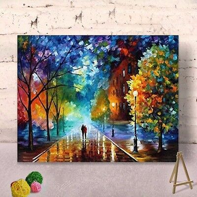 Framed Painting By Number Kit 40*50CM F002 DIY FUN ART Birthday GIFT HOME DECOR
