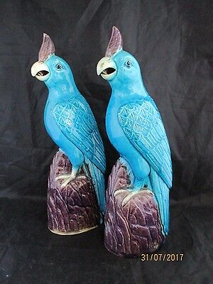 A pair of Chinese  20th century Republic period blue pottery parrots, birds