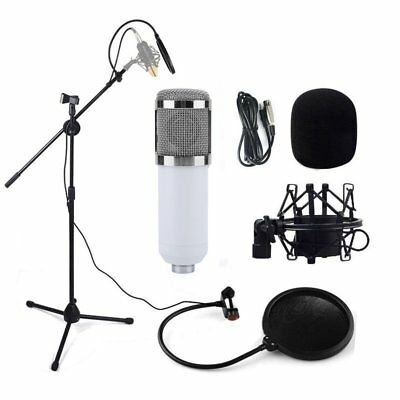 Audio Pro Condenser Microphone Studio Sound Recording w/Boom Stand Pop Filter AS
