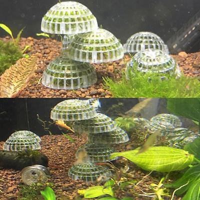 Clear Plastic Aquarium Fish Tank Media Moss Ball Filter Decor For DIY Plant FW