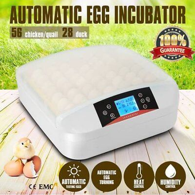 56 Egg Family Incubator Fully Automatic Turning Poultry Chicken Quail Duck JL