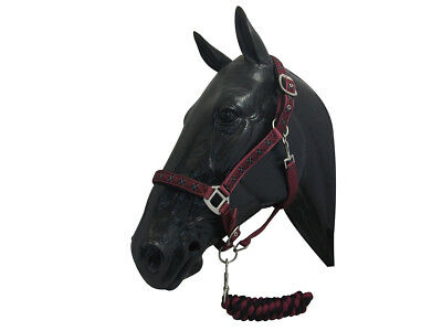 ProTack Protack Deluxe Headcollar & Lead Rope Set Full Burgundy/Black Horse Equi