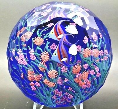 "STEVEN LUNDBERG Angelfish Art Glass LT ED Magnum Paperweight,Apr 3.25""Hx4.25""W"