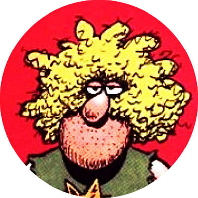 CHAPA/BADGE FAT FREDDY . pin button freak brothers gilbert shelton freewheelin