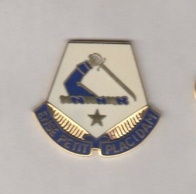 US Army Massachusetts National Guard ARNG crest DUI badge c/b clutchback P-23