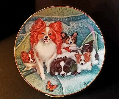 """Danbury Mint Papillon """"LITTER OF LOVE""""  Dog Limited Edition Plate ~ Signed"""