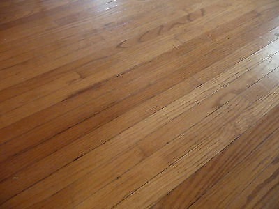 "Antique 1 1/2"" Oak Flooring - C. 1898 Tongue and Groove Architectural Salvage"
