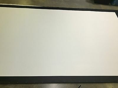 Screen Works 9' x 16' ( 10 x 17) Front Projection Screen Surface ONLY fast fold
