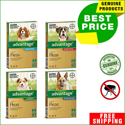 ADVANTAGE Flea Treatment for Dogs All Sizes 6 Pipettes + 2 Pipettes FREE